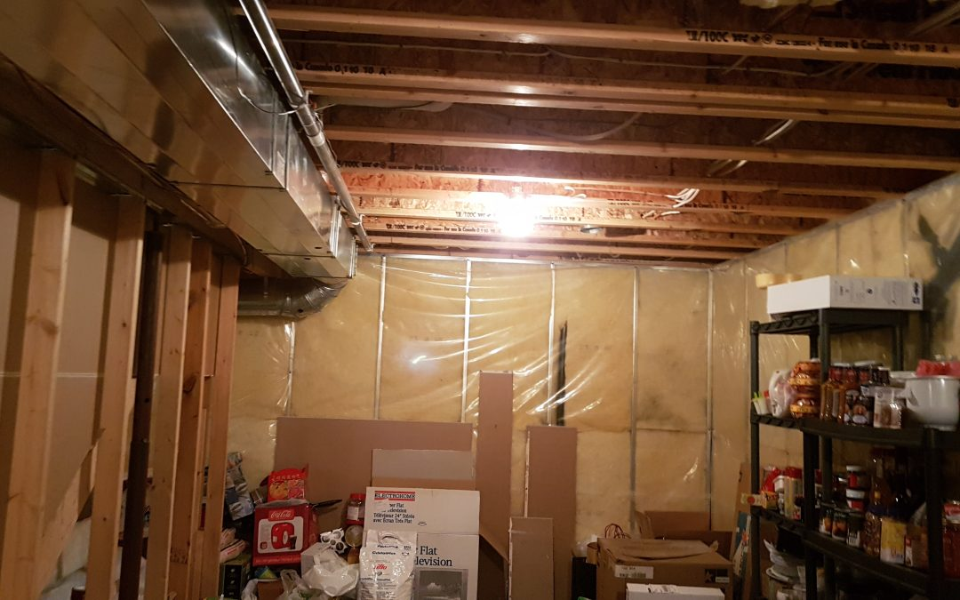 Basement Renovations With Peak Improvements
